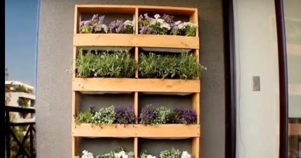 como hacer un muro verde | facilisimo.com